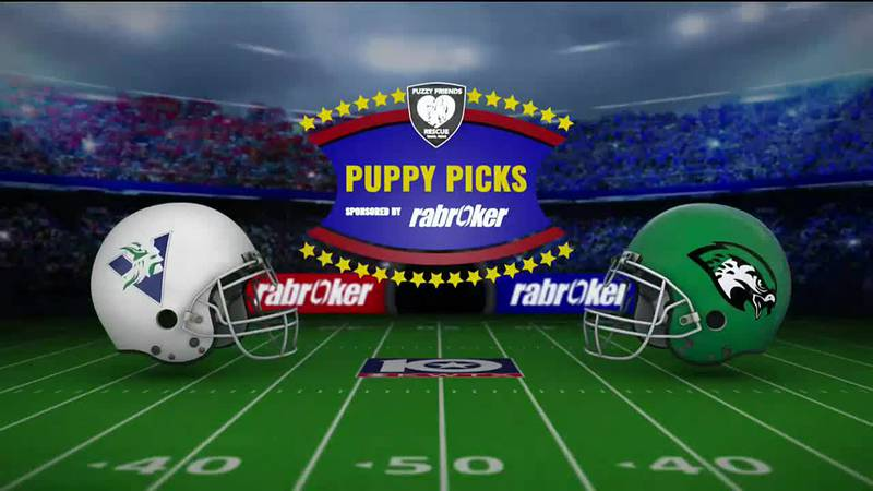 2021 Puppy Picks: Otis, Week 7
