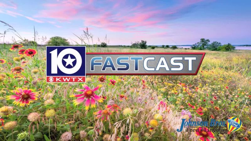 fastcast flower spring wild flowers