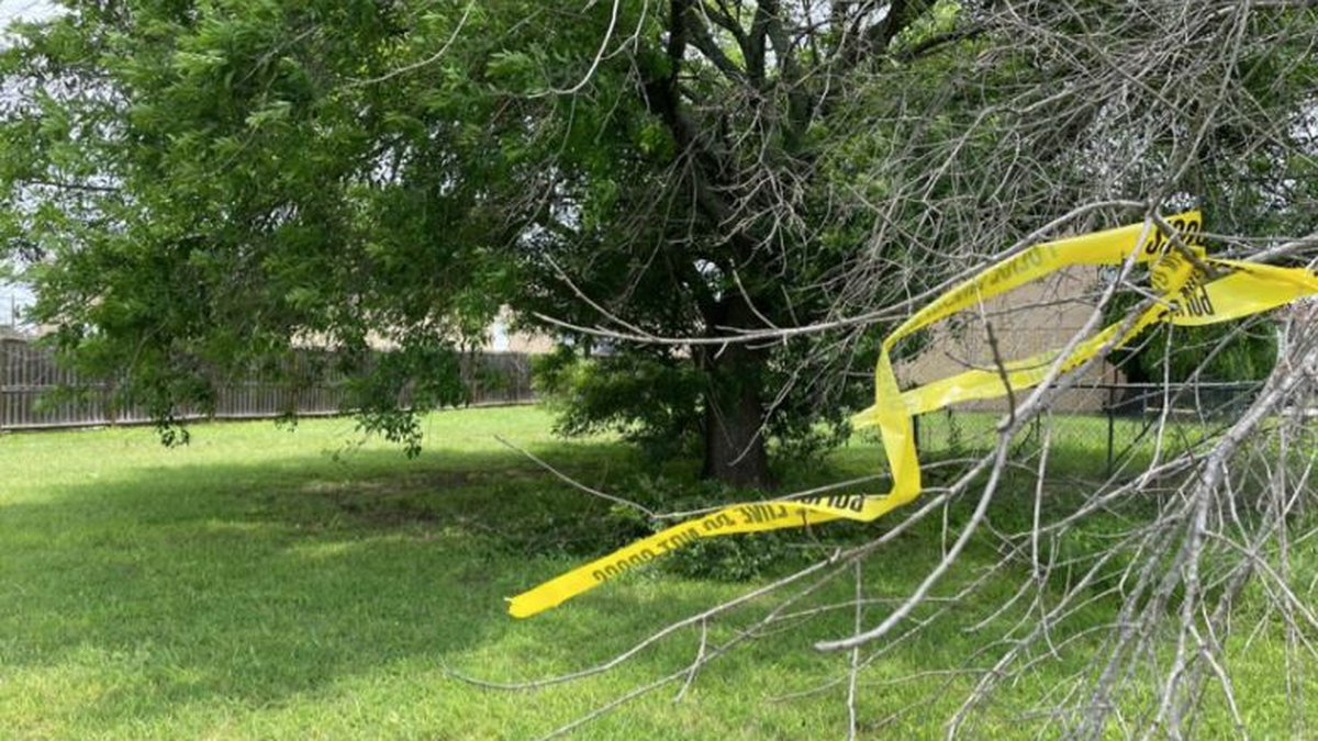 Crime scene tape marks the tree under which the woman's body was found.  (Photo: Eric Franklin)