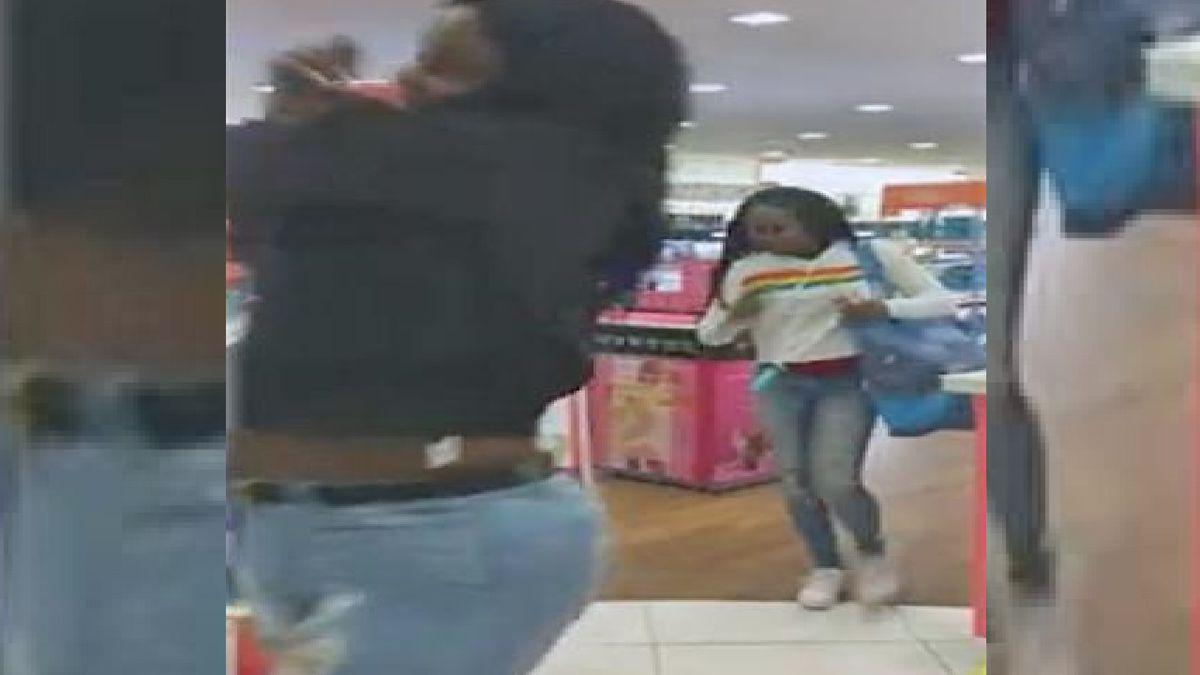 A frame grab from video of the theft.