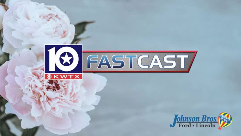 fastcast spring flowers pink floral