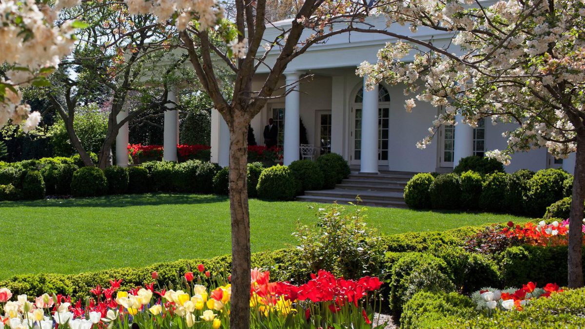 White House Rose Garden South Lawn Need Repairs After Rnc Events