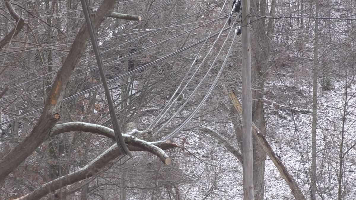 Trees on power lines contributed to some of the thousands of outages in the region. (File)