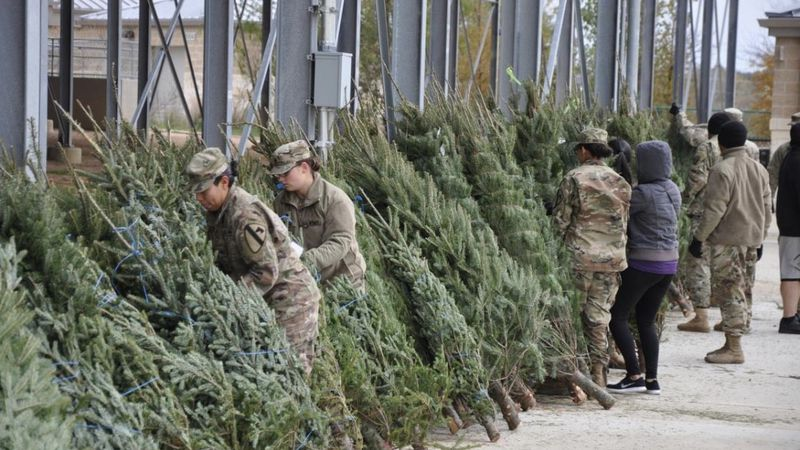 Due to COVID-19, the Trees for Troops giveaway for military families will be held in a...