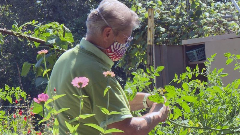 Irene Andrews and her wife keep busy with such activities as gardening, beekeeping, composting...