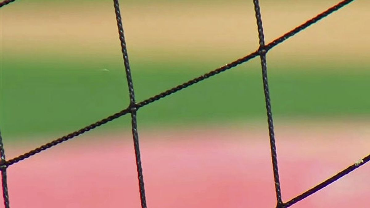 All 30 Major League Baseball stadiums will have extended netting for the upcoming season and a Salado resident who was hit by a ball at a major league game, says the change is long overdue. (File)