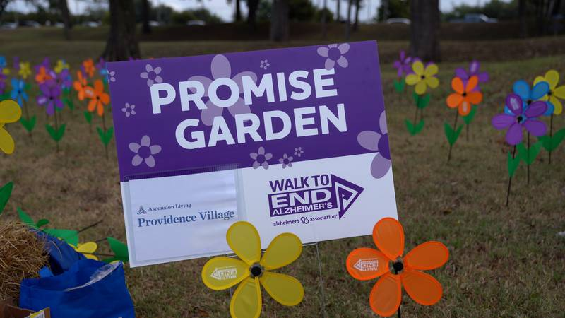 Promise garden at  Annual Walk to End Alzheimer's.