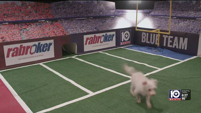Duke runs off the field