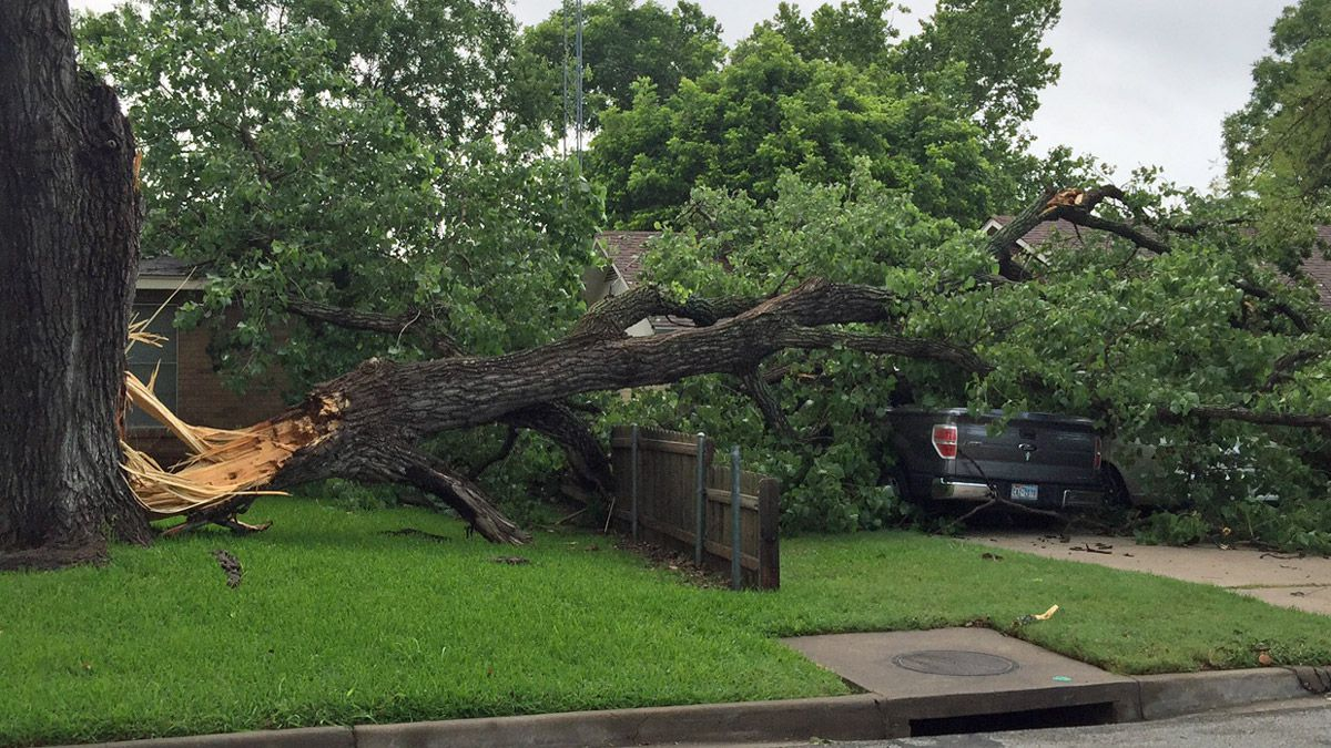 Storm damage in Mexia. (Photo by Ethan Hutchins)