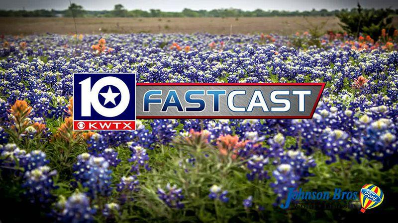 fastcast bluebonnets wildflowers spring bloom