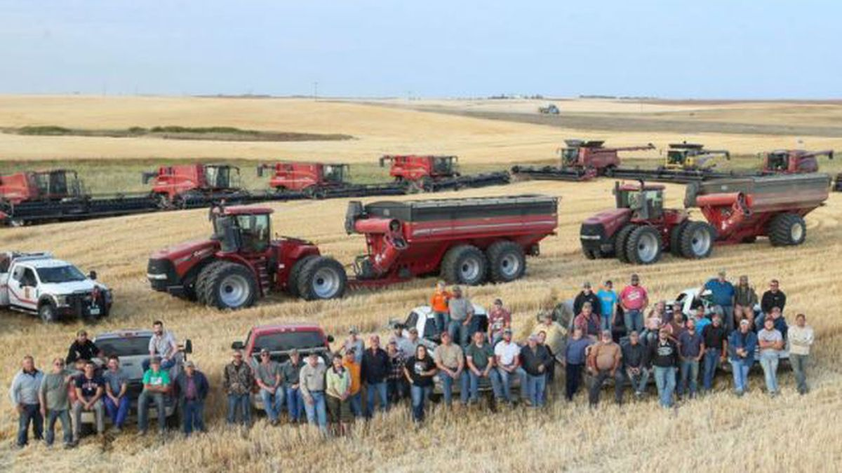 Neighbors, friends, and family brought 11 combines, 6 grain carts, and 15 semis to get Unhjem's Durum Wheat and Canola in the bin.