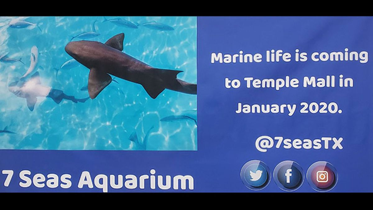 7 Seas Aquarium has announced it will open an interactive attraction at the Temple Mall, in January.