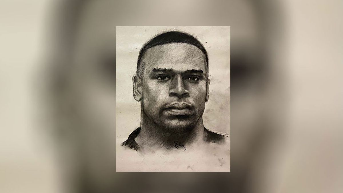 """Investigators released a composite sketch of the suspect, identified only as """"SSG Johnson."""" (Army CID sketch)"""