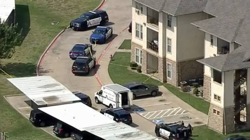 The brothers were shot at an apartment complex in south Arlington.