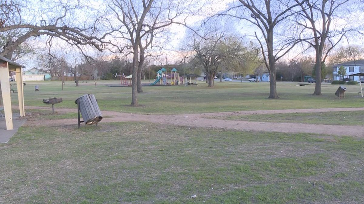 Two men injured in a dog attack Wednesday morning in a city park were taken to a local hospital...