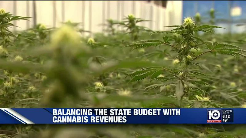 Cannabis advocates tweak their legislative priorities amid Texas' budget shortfall