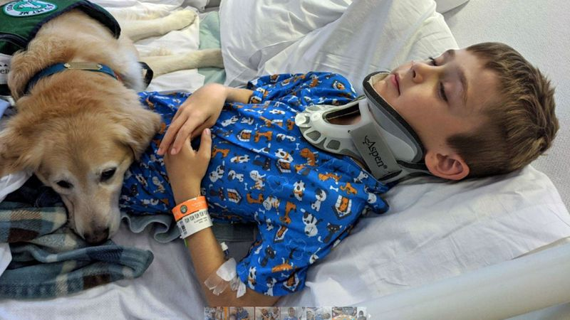 Cooper Guy, 8, a third grader at Speegleville Elementary School, was released from the hospital...