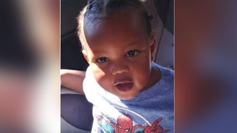 The Amber Alert for Michael Hamilton, 2, has been canceled after he was found safe.