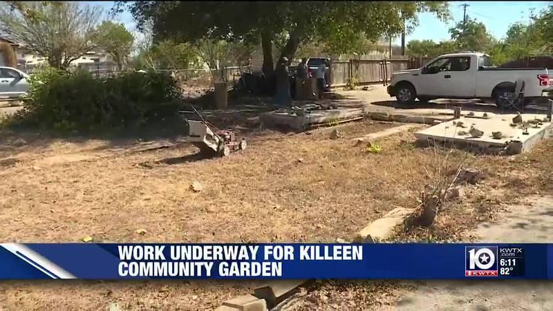 Community garden in Killeen